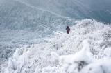 Mùa đông tuyết trắng đẹp như cổ tích ở Nhật Bản