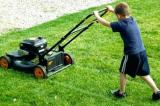 cắt cỏ