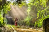 Thuận theo tự nhiên