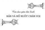Quái chiêu tạo hình nghệ thuật Đông Sơn: Cán dao găm đúc hình rắn và hổ nuốt chân voi