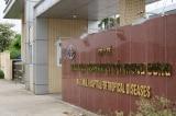 bệnh viện, viêm phổi vũ hán