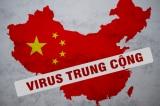 """Foreign Policy: Đại dịch là hậu quả của chính trị, đừng ngại cái tên """"virus Trung Cộng"""""""