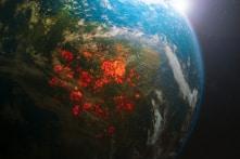 7 thiên tai nhân họa trái đất đang phải đối mặt