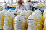 Trung Quốc xuất gần 4 tỷ khẩu trang, 16.000 máy thở từ tháng Ba