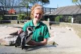 Nhân viên sở thú tại Anh tự cách ly 3 tháng để chăm sóc động vật