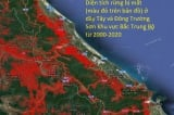 Diện tích rừng bị mất ở Việt Nam trong vòng 20 năm qua – Sốc!