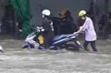 Cà Mau ngập trắng sau mưa lớn