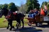 Người Amish 'không màng thế sự' đánh xe ngựa diễu hành ủng hộ ông Trump