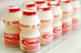 Uống sữa chua Yakult đúng cách: Chọc thủng hay xé rách nắp nhôm?
